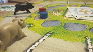 Bild: Spielfeld mit  Tieren, Karten und Spielsteinen