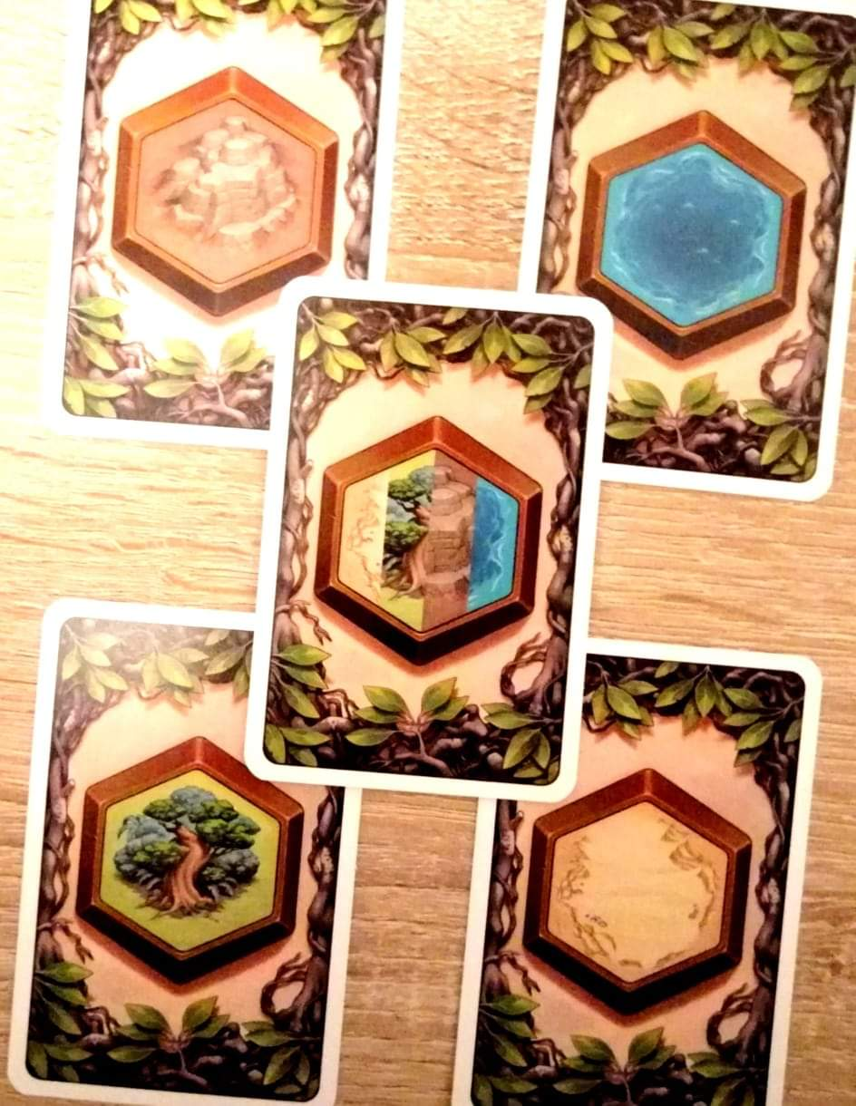 Die vier möglichen Geländekarten mit Berge, Wasser, Wald und Wüste, sowie die Jokerkarte