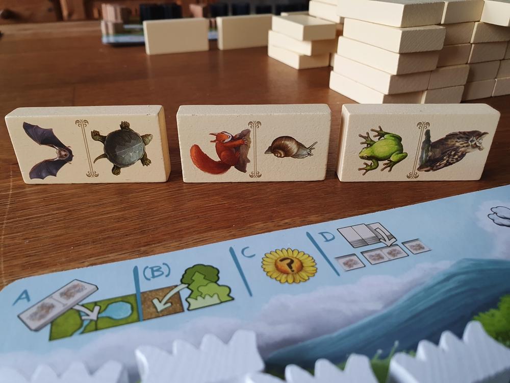 Drei Dominosteine mit Tierabbildungen vor dem Spielertableau