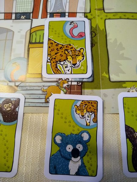 Leopard passt , die nächste Karte ist der Flamingo!