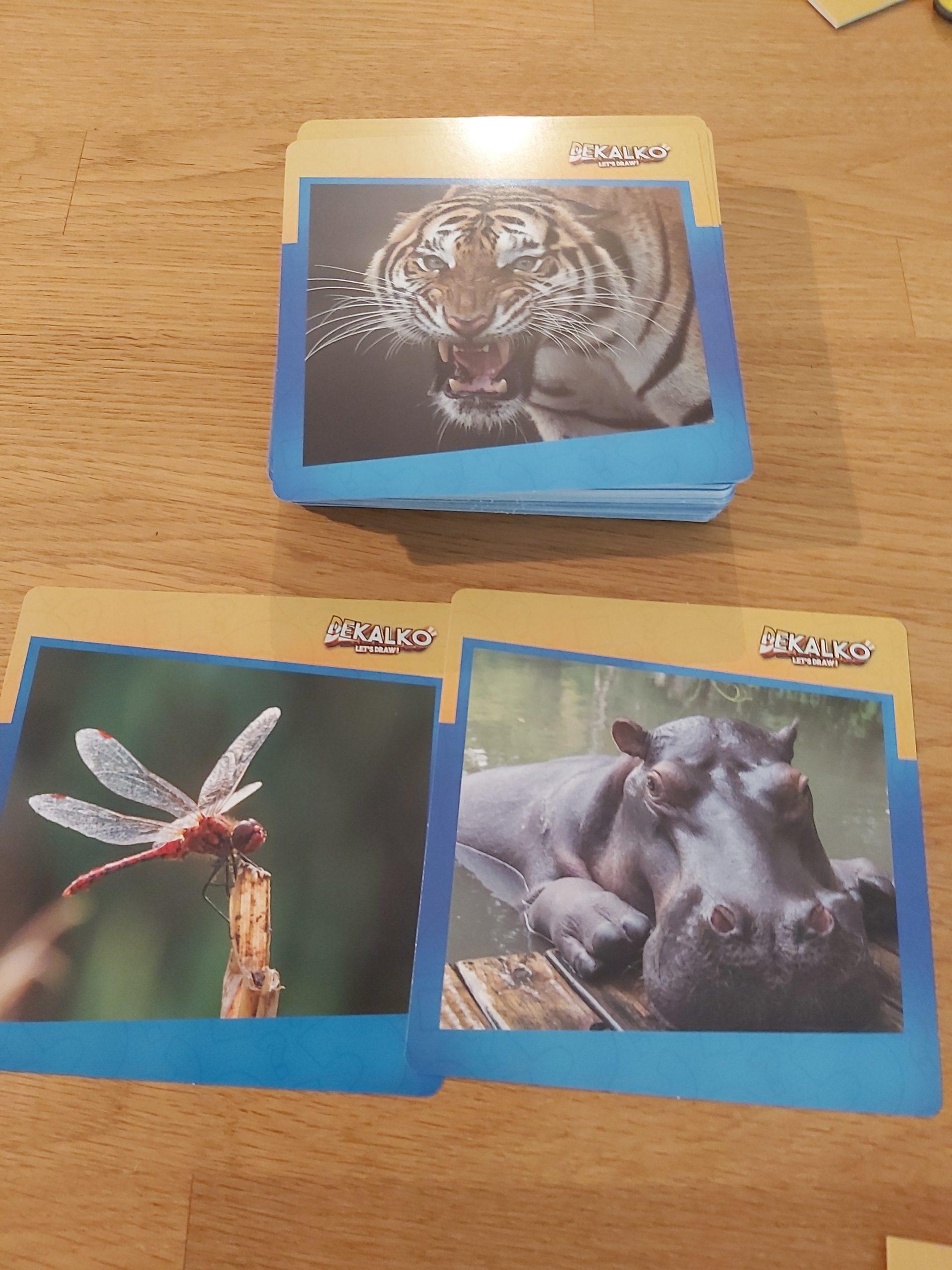 Zu sehen sind die Bildkarten von Dekalko.